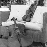 Musica, Bodas y Eventos