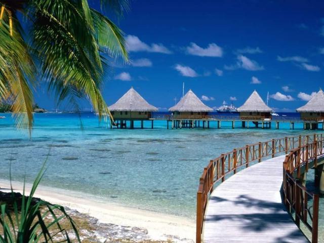 Moorea, Polinesia Francesa | Casamientos Online