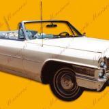 Auto Clásico III, Autos para casamientos