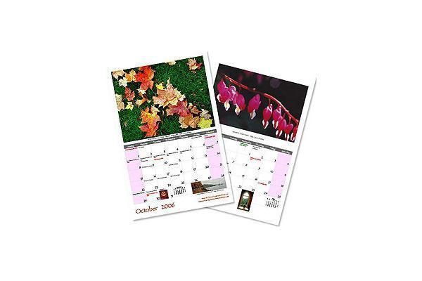 AlbumCo | Casamientos Online