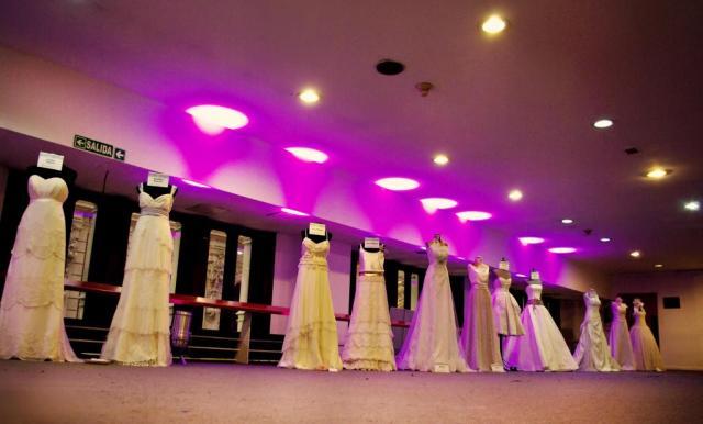 Galería de Vestidos de Novia