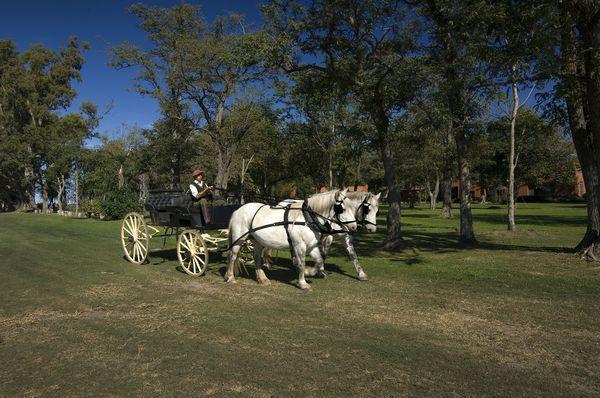 El Carruaje en Puesto Viejo Estancia | Casamientos Online