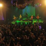 Los Auténticos Inoxidables (Shows Musicales)