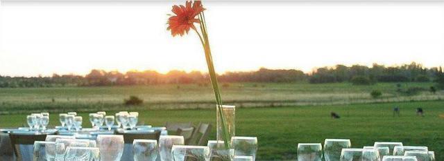 Lopez Sicardi - Girasoles de San Gara | Casamientos Online