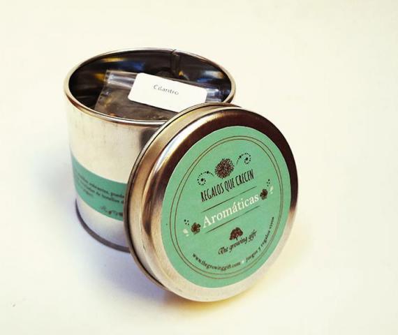 Kit germinador de aromáticas en maceta de hojalata