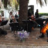 Musica, Bodas y Eventos (Shows Musicales)