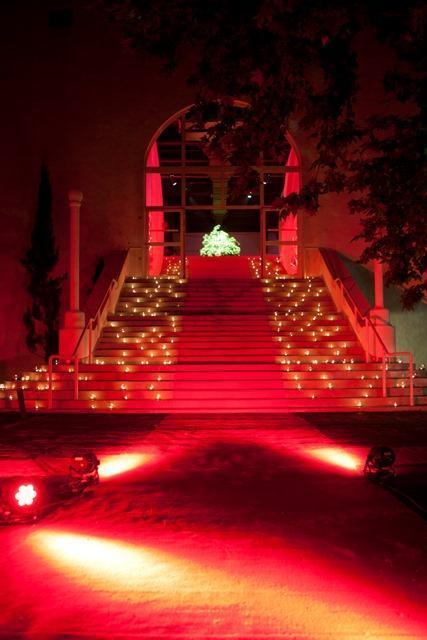 darwin san isidro | Casamientos Online