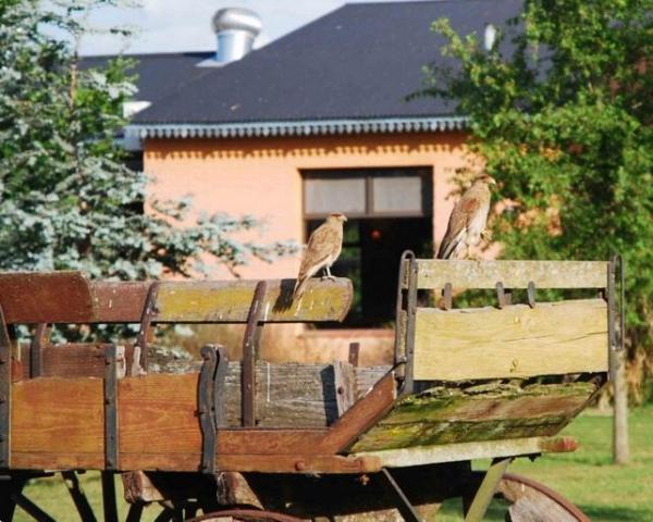 Pampas del Sur | Casamientos Online