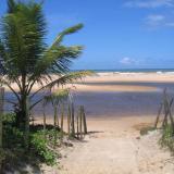 Playa paraiso CANCÚN!
