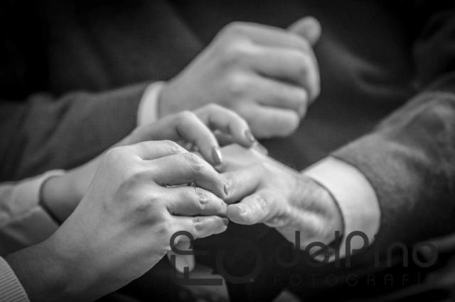 Los anillos | Casamientos Online