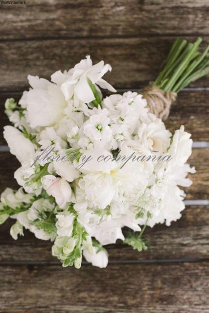 #floresycia# floresdeverano | Casamientos Online