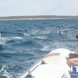 Crucero por Patagonia ...una luna de miel diferente!