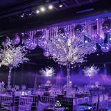 Luxury Drone  Wedding Promo
