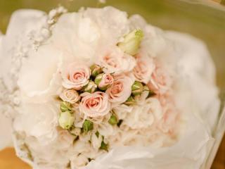 Imagen de Flowerpunch Ramos&Toca...