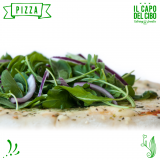 Civil  Finger Food + Pizza..., Catering