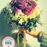Pax Eventos