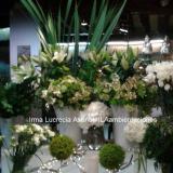 Irma Lucrecia Asenal (Ambientación y Centros de Mesa)