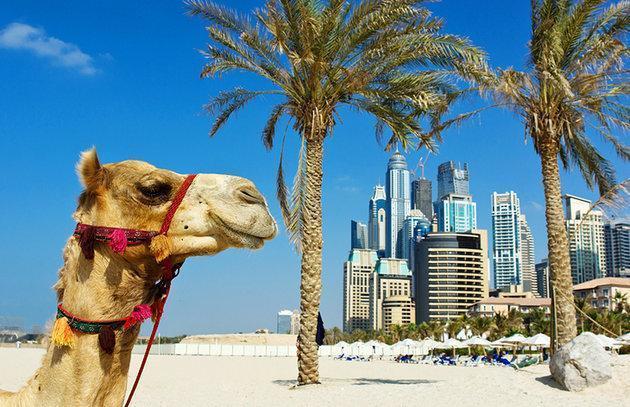 Playa Jumeirah, Dubai | Casamientos Online