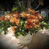 Sogna Ambientaciones Diseño Floral