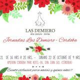 jornada Las Demiero en Córdoba