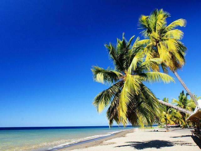 Martinica | Casamientos Online