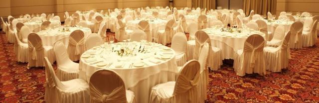 Gran Salón - Diplomatic Hotel