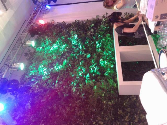 Jardin vertical    Casamientos Online
