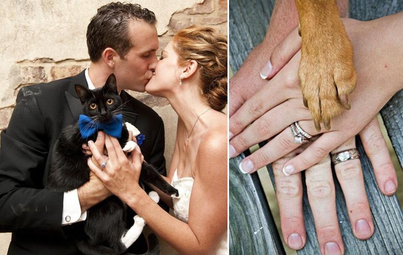 Mascotas en el casamiento, si ó no?
