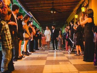Imagen de Girasoles de San Gará...