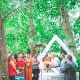 Imagen de Girasoles de San Gará