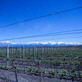 Auberge du vin - Mendoza (Salones de Hoteles)