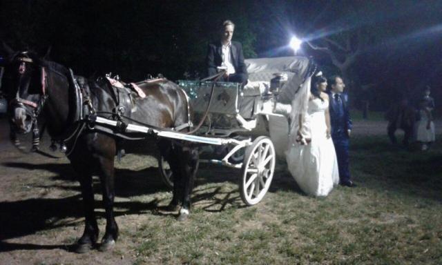Mateo | Casamientos Online