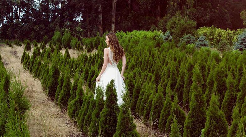 Vestidos de novia de acuerdo a la estacion