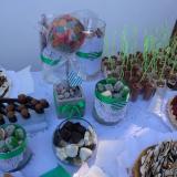 Viccino Pastelería (Mesas Dulces y Cosas Ricas)
