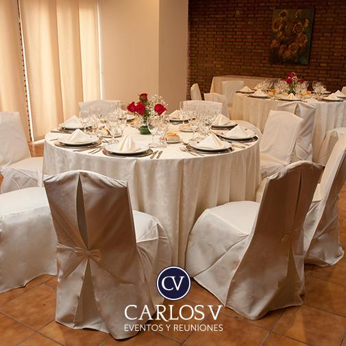 Carlos V Hotel - Sala VIP
