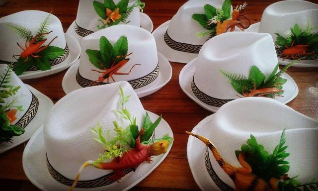 Sombreros Panama Wild | Casamientos Online