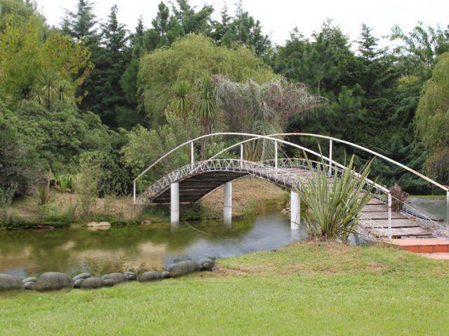 Puente | Casamientos Online