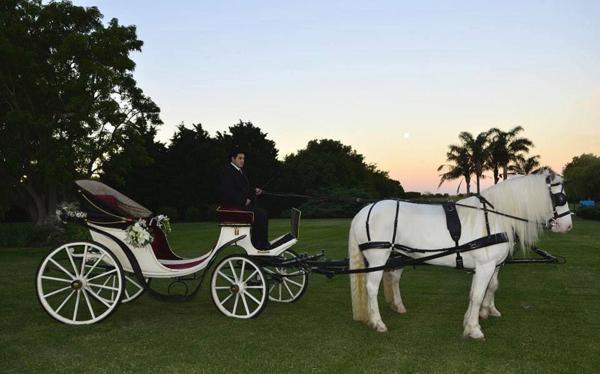 Virginia Soria (Wedding Planners) | Casamientos Online