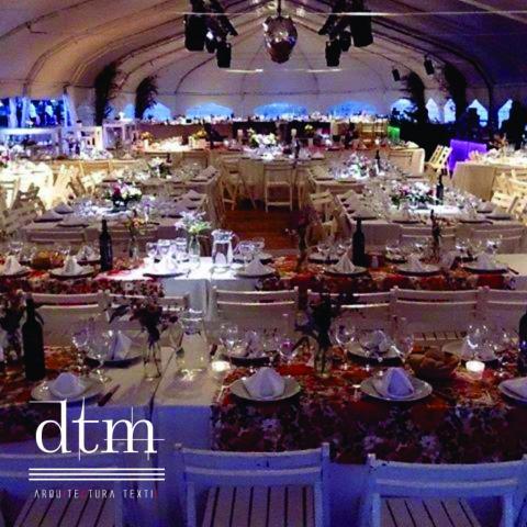 DTM Group (Alquiler de Carpas y Baños Móviles)