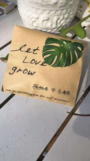 Bolsa con semillas