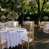 Boda de Shereen y Alex