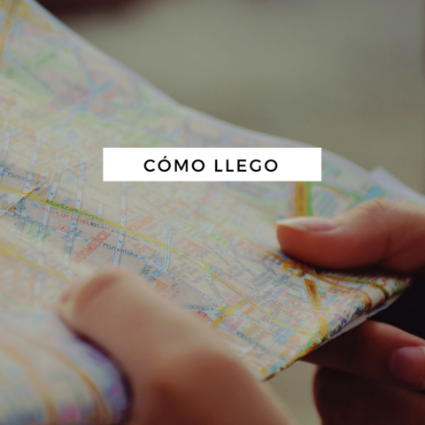 Imagenes | Casamientos Online
