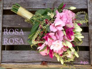 Imagen de Rosa Rosa diseño flora...