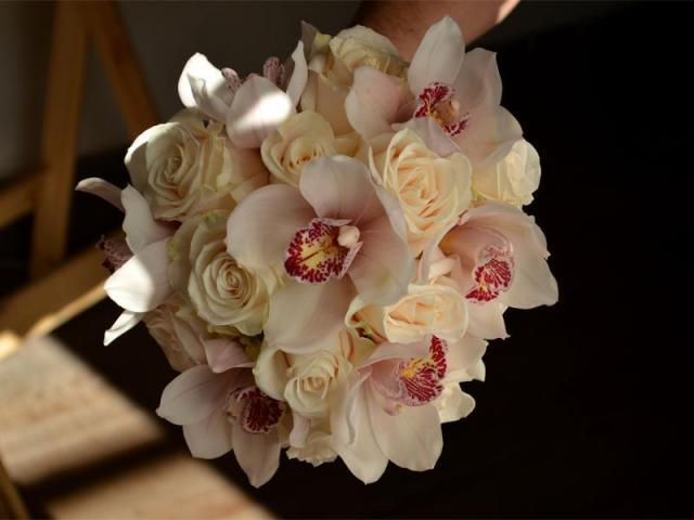 rosa rosa | Casamientos Online