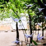 Bosque de Piedras (Salones de Fiesta)
