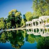 Estancia La Hungría - SANTA ROSA DE CALAMUCHITA (Quintas y Estancias)