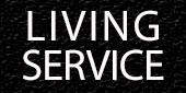 Logo Living Service