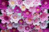 Imagen 3 de Ambientaciones con Flores de Papel