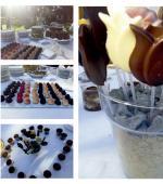 VOJO Chocolates