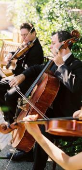 Imagen 1 de Shows Musicales para tu casamiento
